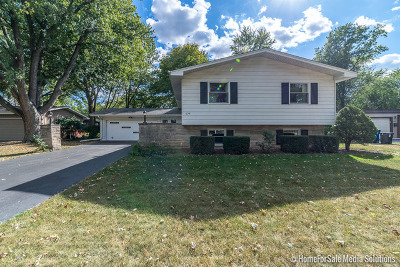 Lisle Single Family Home Price Change: 625 Columbine Avenue