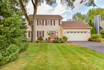 Wheaton Single Family Home For Sale: 2079 Childs Court