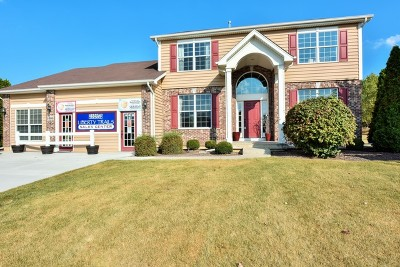 McHenry Single Family Home For Sale: 1600 Reagan Boulevard
