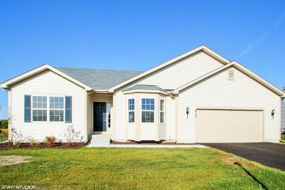 McHenry Single Family Home For Sale: 1709 Hoover Trail