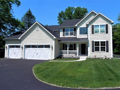 McHenry Single Family Home For Sale: 2317 Tyler Trail