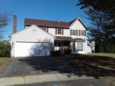 Hanover Park Single Family Home For Sale: 3975 Ludington Court