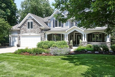 Wheaton  Single Family Home For Sale: 1311 Foothill Drive