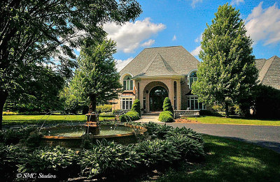 Beecher Single Family Home For Sale: 450 East Goodenow Road