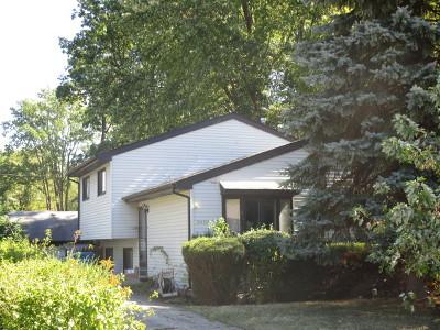 Wheaton Single Family Home For Sale: S015 Evans Avenue