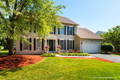 High Meadow Single Family Home For Sale: 2211 Snapdragon Road