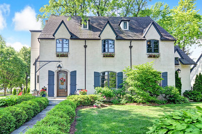 Hinsdale Single Family Home For Sale: 542 Ravine Road