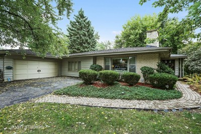 Downers Grove Single Family Home For Sale: 4429 Prospect Avenue