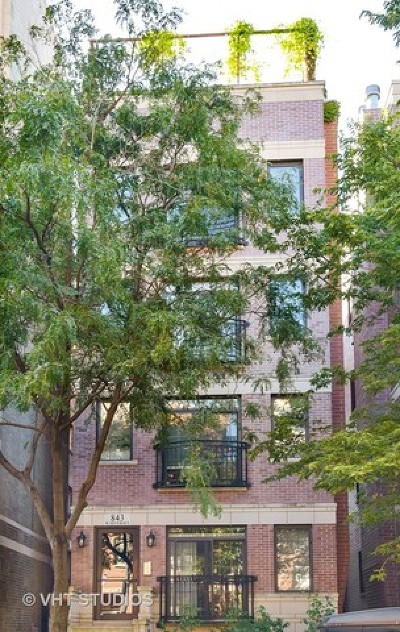 Cook County Condo/Townhouse New: 843 West Diversey Parkway #4