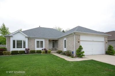 Palatine Single Family Home New: 634 North Victoria Drive