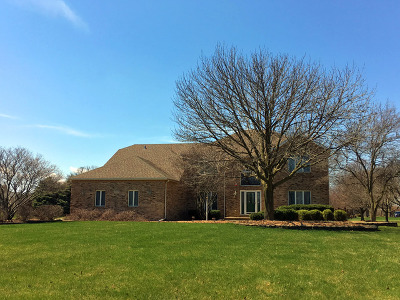 Plainfield Single Family Home For Sale: 17339 South McKenna Drive