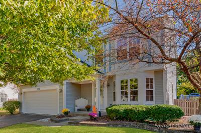 Carpentersville Single Family Home Contingent: 152 Tay River Drive