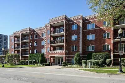 Wheaton Condo/Townhouse Contingent: 100 North Gary Avenue #210