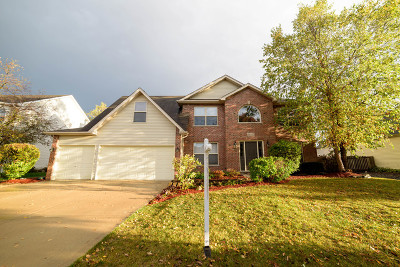 Plainfield Single Family Home For Sale: 24517 Wellesley Circle