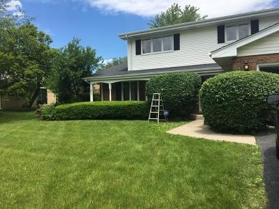 Homewood Single Family Home For Sale: 19137 Loomis Avenue