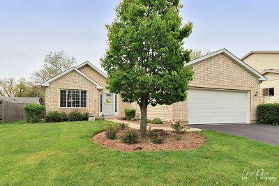 Fox Lake Single Family Home Contingent: 508 Madison Avenue