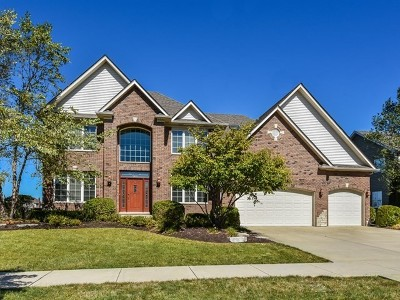 Plainfield Single Family Home Contingent: 22832 Eider Court