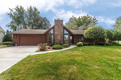 Crete Single Family Home For Sale: 3121 East Bending Creek Trail