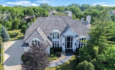 Burr Ridge Single Family Home For Sale: 9 Clubside Court