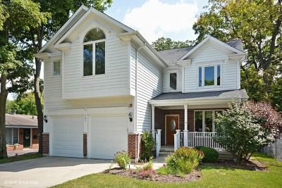 Glen Ellyn Single Family Home For Sale: 501 Taylor Avenue