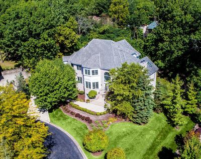 Burr Ridge Single Family Home For Sale: 6 Tumblebrook Court