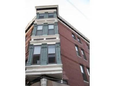 Chicago Rental For Rent: 733 North Wells Street #3