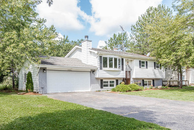 McHenry Single Family Home For Sale: 611 Country Club Drive