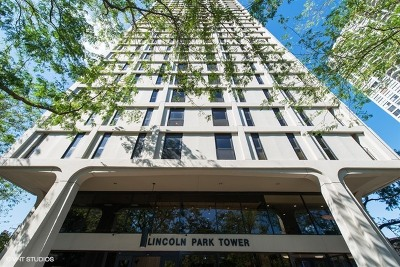 Chicago Condo/Townhouse For Sale: 1960 North Lincoln Park West Avenue #804