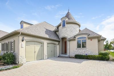 Burr Ridge Single Family Home For Sale: 7975 Savoy Club Court