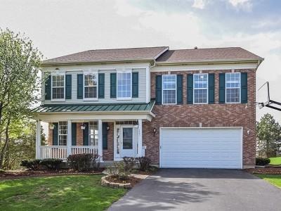 Palatine Single Family Home For Sale: 1347 West Poplar Street