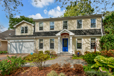 Glen Ellyn Single Family Home For Sale: 408 Fairview Avenue
