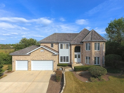 Orland Park Single Family Home For Sale: 15168 Grandview Drive
