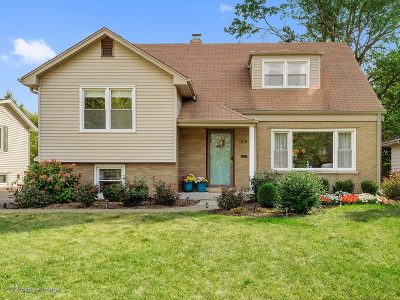 Western Springs Single Family Home For Sale: 3943 Western Avenue