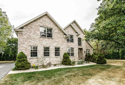 Palatine Single Family Home For Sale: 5003 Sunset Court