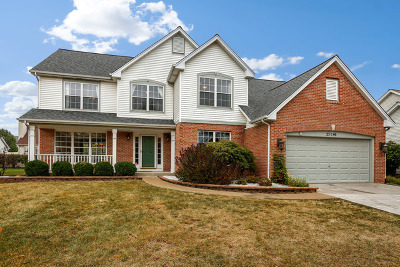 Plainfield Single Family Home For Sale: 23746 Tall Grass Drive