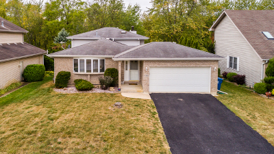 Steger Single Family Home For Sale: 120 Lake Hill Drive