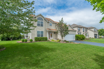 Plainfield Single Family Home Contingent: 13220 Tiger Lily Lane
