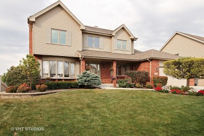 Orland Park Single Family Home For Sale: 11732 Blackburn Drive