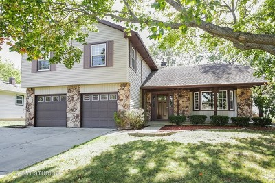 Hoffman Estates Single Family Home Contingent: 1859 Burr Ridge Drive