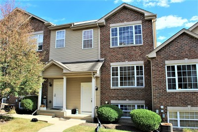 Elburn Condo/Townhouse For Sale: 653 East Willow Street