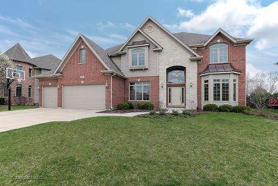 Naperville Single Family Home For Sale: 528 Eagle Brook Lane