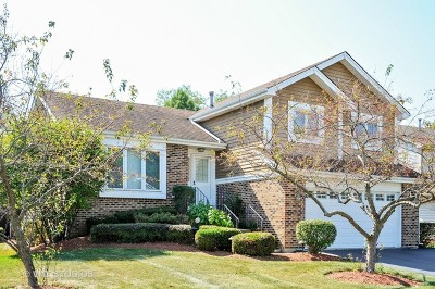 Lake Zurich Single Family Home For Sale: 317 Denberry Drive
