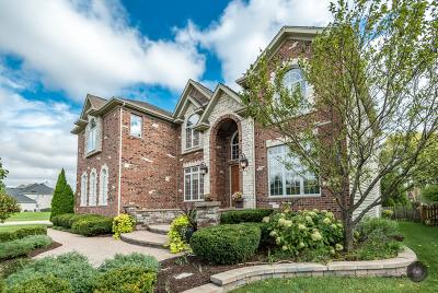 Single Family Home For Sale: 2504 Skylane Drive