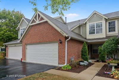 Warrenville Condo/Townhouse For Sale: 30w004 Spruce Court