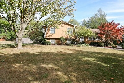 Downers Grove Single Family Home For Sale: 4029 Washington Street
