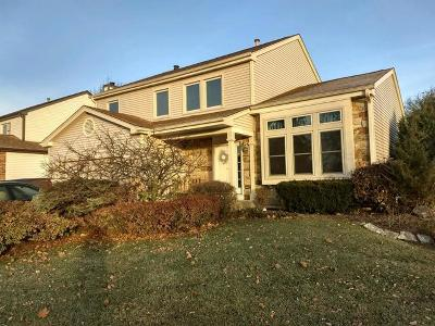 Lake Zurich Single Family Home For Sale: 1121 Stanton Road