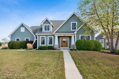 Elburn Single Family Home For Sale: 1289 Corrigan Street