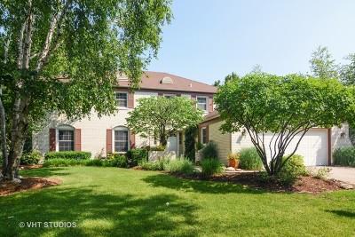 Palatine Single Family Home For Sale: 1132 West Skylark Drive