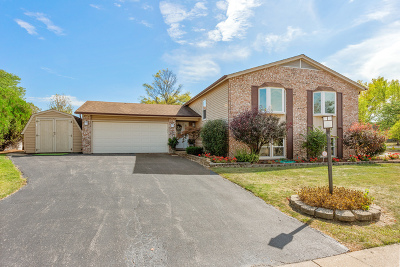 Westmont Single Family Home For Sale: 821 Oakwood Drive