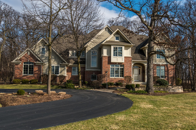 Elburn Single Family Home For Sale: 1s105 Donny Hill Road